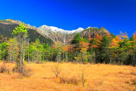 快晴の上高地 紅葉の田代湿原より冠雪の穂高連峰の写真素材 [FYI03440781]