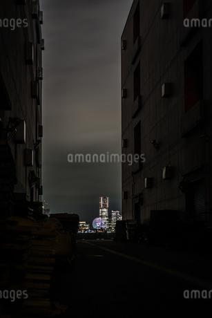 建物の間から見える横浜みなとみらいの夜景の写真素材 [FYI03440782]