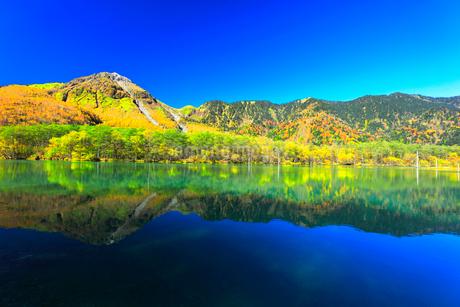 快晴の上高地 大正池より紅葉の森と焼岳の写真素材 [FYI03440783]