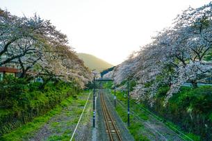 春の山北駅(神奈川県足柄上郡)の写真素材 [FYI03440816]