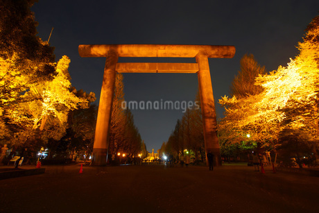 夜の靖国神社の写真素材 [FYI03440895]