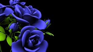 Blue Roses Bouquet On Black Text Spaceのイラスト素材 [FYI03440963]