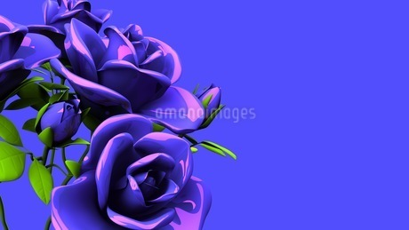 Blue Roses Bouquet On Blue Text Spaceのイラスト素材 [FYI03440965]