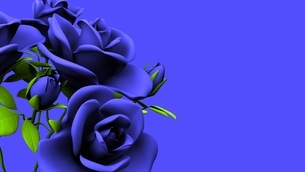 Blue Roses Bouquet On Blue Text Spaceのイラスト素材 [FYI03440967]