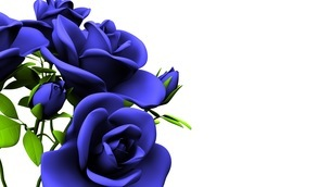 Blue Roses Bouquet On White Text Spaceのイラスト素材 [FYI03440971]