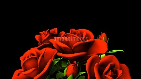 Red Roses Bouquet On Black Text Spaceのイラスト素材 [FYI03440974]