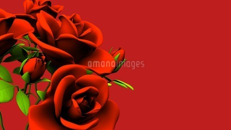 Red roses  bouquet on red text spaceのイラスト素材 [FYI03440979]