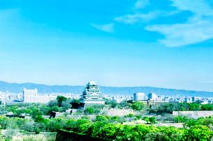 大阪城と緑の大阪城公園の写真素材 [FYI03441013]