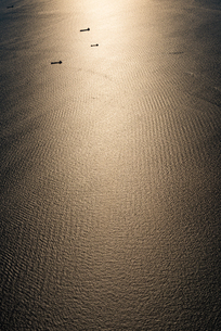 飛行機から見る東京湾の写真素材 [FYI03441112]