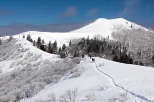 雪の武奈ヶ岳西南稜(滋賀県 比良山 武奈ヶ岳)の写真素材 [FYI03441124]