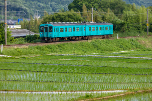 JR西日本、和歌山線、古い車両の写真素材 [FYI03441147]