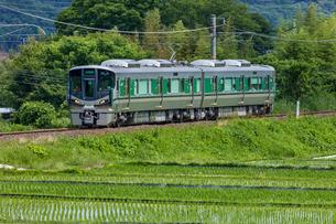 JR西日本、和歌山線、ローカル線の旅の写真素材 [FYI03441177]