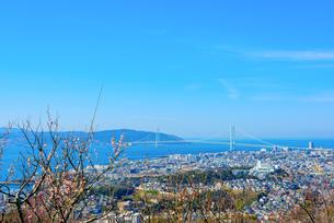 須磨浦山上梅林より明石海峡大橋を望むの写真素材 [FYI03441225]