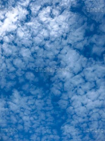 青空と雲の写真素材 [FYI03441348]