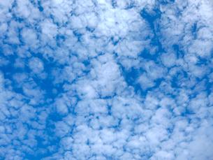 青空と雲の写真素材 [FYI03441349]
