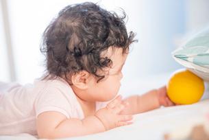ボールを探す生後6か月の赤ちゃんの写真素材 [FYI03441404]
