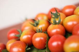 季節の野菜、プチトマトの写真素材 [FYI03441537]