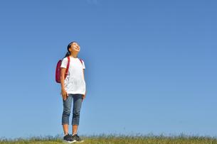 青空で見上げる小学生の女の子(ランドセル)の写真素材 [FYI03441696]