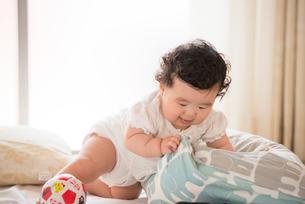 ハイハイしながらクッションに興味を示す生後6か月の赤ちゃんの写真素材 [FYI03441859]