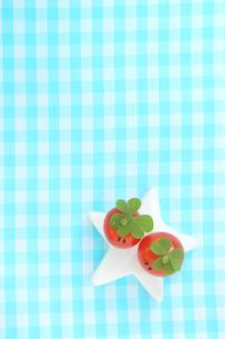 クローバーの帽子を被った顔のあるかわいいミニトマトのカップルと星型のオブジェの写真素材 [FYI03442482]