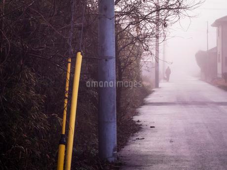 濃霧の中散歩する人と飼い犬の写真素材 [FYI03442539]