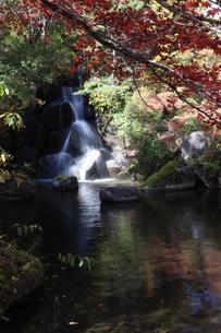 紅葉と滝の写真素材 [FYI03442690]