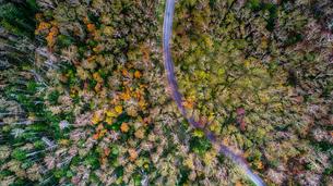 鹿追の空撮の写真素材 [FYI03443112]