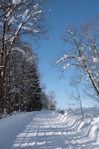 田舎の冬の坂道の写真素材 [FYI03443426]