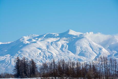 冬山の山頂と青空 十勝岳の写真素材 [FYI03443432]