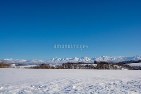 雪原と冬の山並みと青空 十勝岳連峰の写真素材 [FYI03443435]