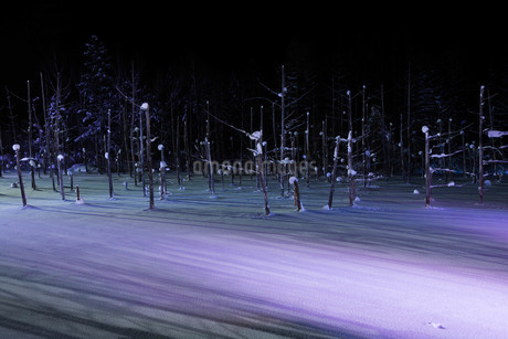 ライトアップされた冬の湖 美瑛町の写真素材 [FYI03443438]