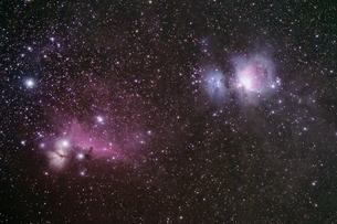 オリオン座中心部の写真素材 [FYI03443959]