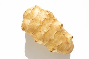 菊芋 キクイモの写真素材 [FYI03443962]