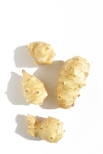 菊芋 キクイモの写真素材 [FYI03443963]