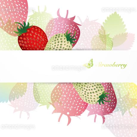 苺 背景のイラスト素材 [FYI03443999]