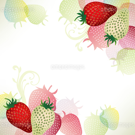 苺 背景のイラスト素材 [FYI03444002]