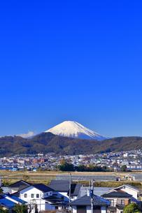 富士山の見える住宅街の写真素材 [FYI03444075]