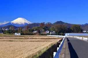 富士山の見える道路の写真素材 [FYI03444108]