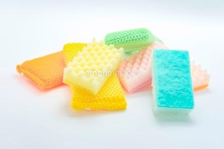 キッチンの食器洗いスポンジの写真素材 [FYI03444171]