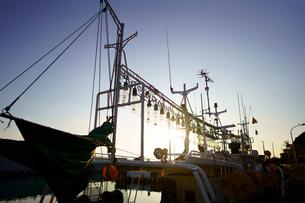 イカ釣り漁船の写真素材 [FYI03444406]