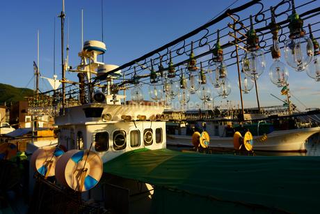 イカ釣り漁船の写真素材 [FYI03444407]
