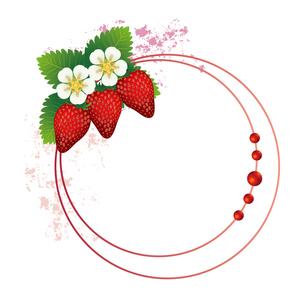 苺 フレームのイラスト素材 [FYI03444420]