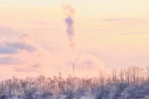 冬の風景の写真素材 [FYI03444695]