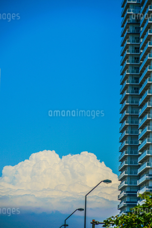 マンションの間から見える入道雲の写真素材 [FYI03444734]