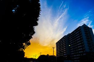 夕焼けと電線と建物のシルエットの写真素材 [FYI03444738]