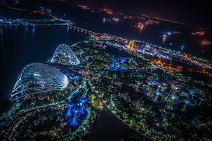 マリーナ・ベイ・サンズ展望台からの夜景(シンガポール)の写真素材 [FYI03444769]