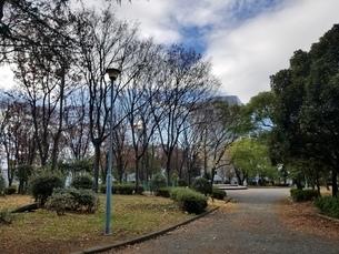 公園の写真素材 [FYI03445264]