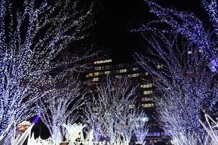 冬の街中の写真素材 [FYI03445268]