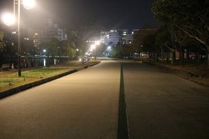 公園の写真素材 [FYI03445330]