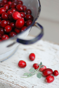 赤い木の実とアンティーク クリスマスイメージ写真の写真素材 [FYI03445515]